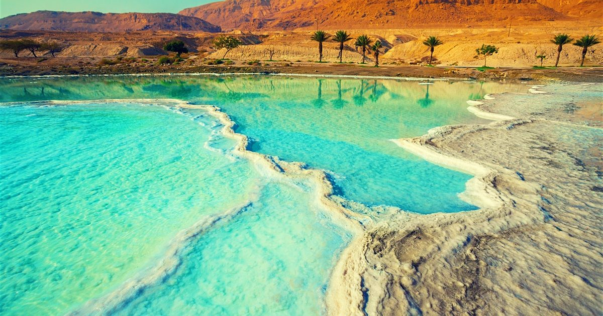 Maestro Moviente Tigre  Jordan | Dead Sea – Nashi Travel